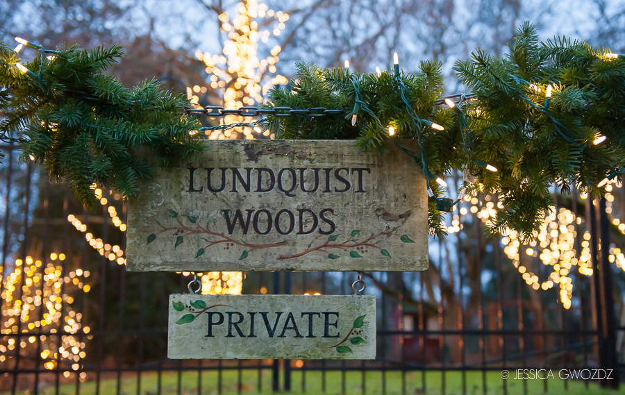Lundquist Woods at Christmas, by Jessica Gwozdz