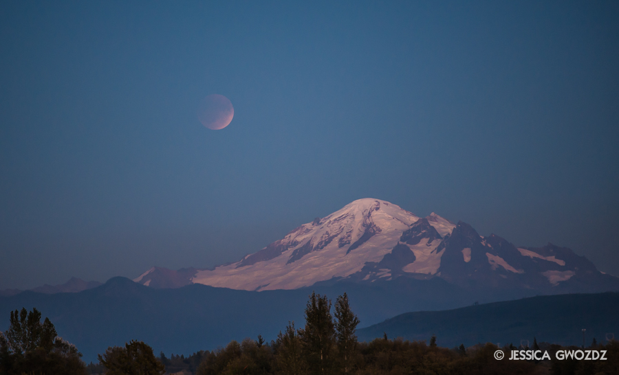 Blood moon rising over Mount Baker.  Photographed in Bellingham by Jessica Gwozdz