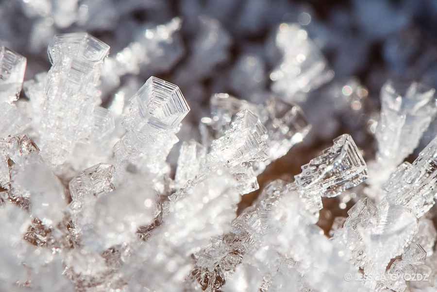 Ice Macro, by Jessica Gwozdz