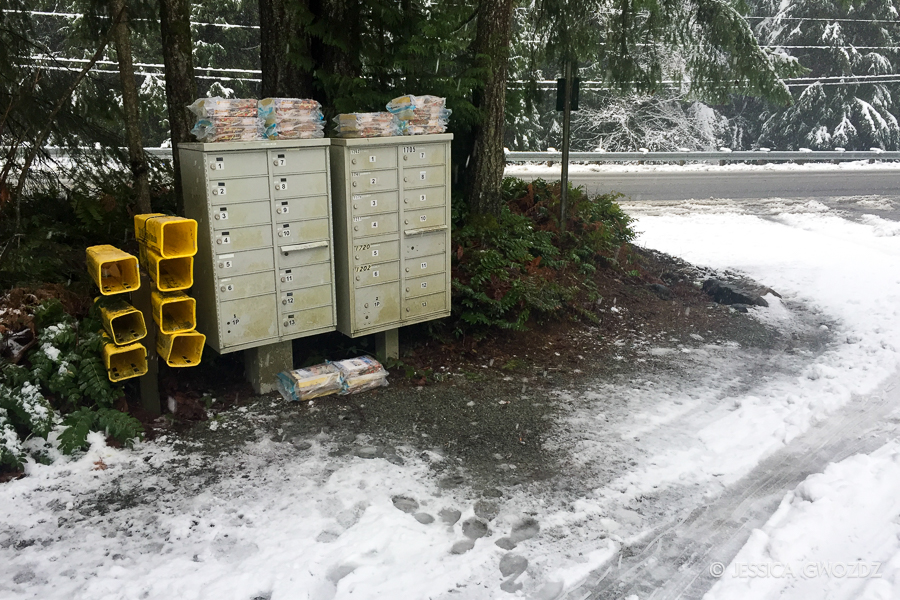 Mailboxes in the Snow, by Jessica Gwozdz